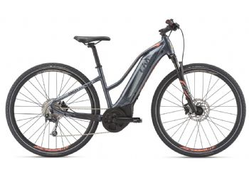 Amiti E+ 2 Electric Bike 2019